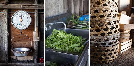 Willowood Farm Produce