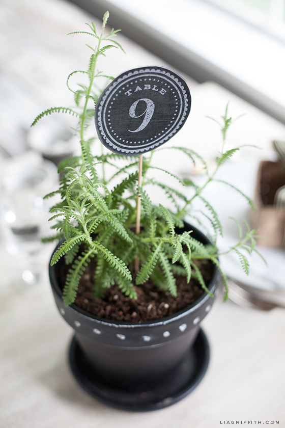 Table Numbers in Chalkboard Style