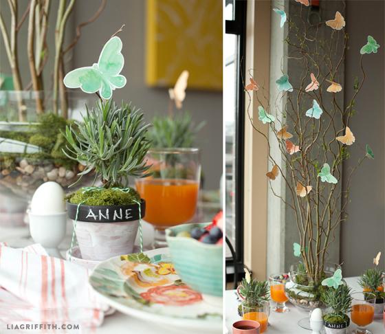 Butterfly_Details_Brunch