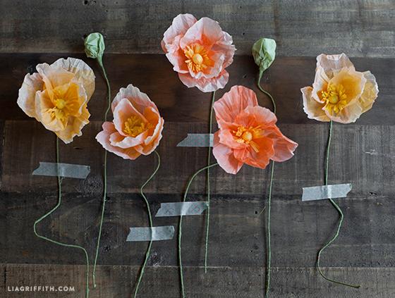 Tissue_Paper_Poppies
