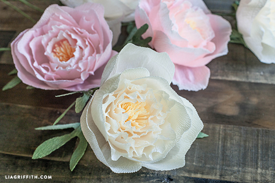 Crepe_Paper_Peony_Template