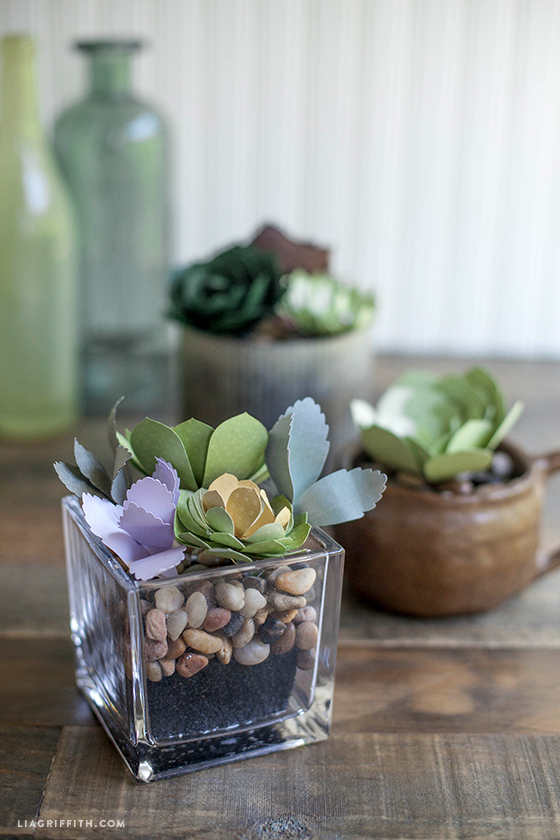 _DIY_Paper_Succulents