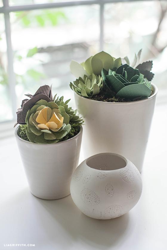 Paper_Succulent_Pots