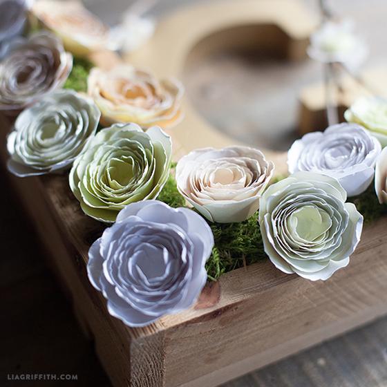 Paper_Flower_Ranunculus