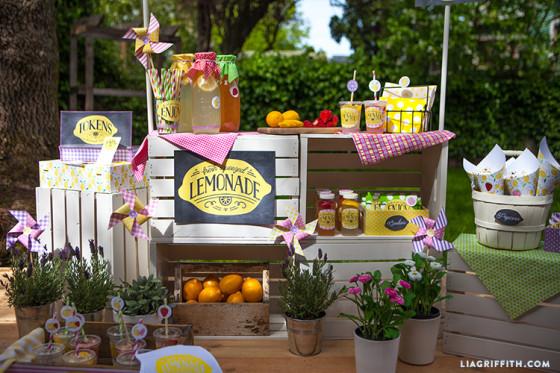 DIY_Lemonade_Stand_Party