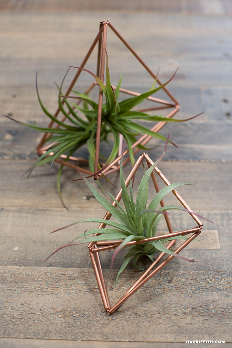 Copper_Pipe_Succulent_Holders