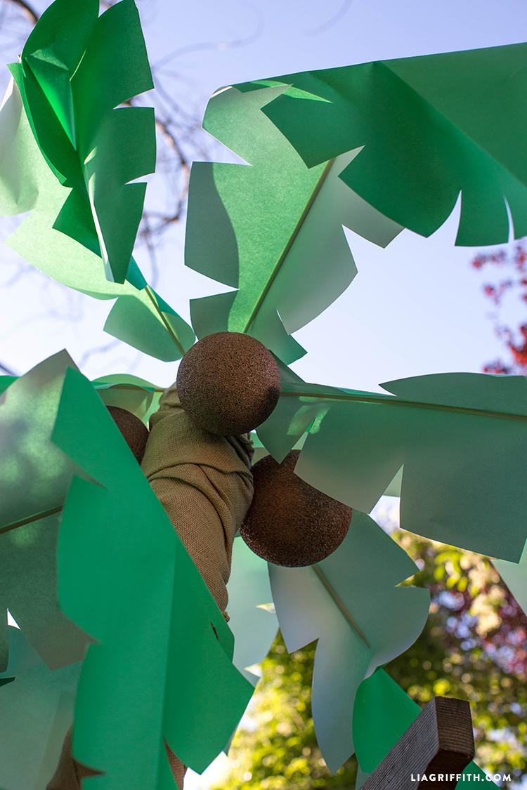 Palm_Tree_Coconuts_