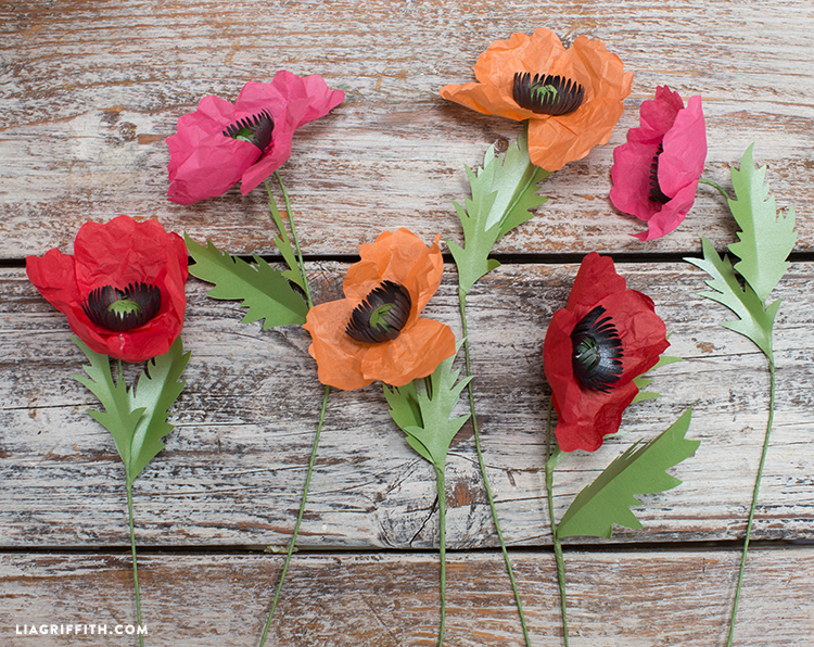 Paper_Poppies_Tissue_Paper