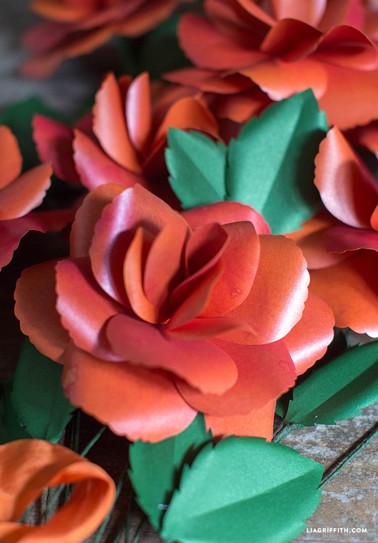Rose_Garden_Paper_Flower_DIY