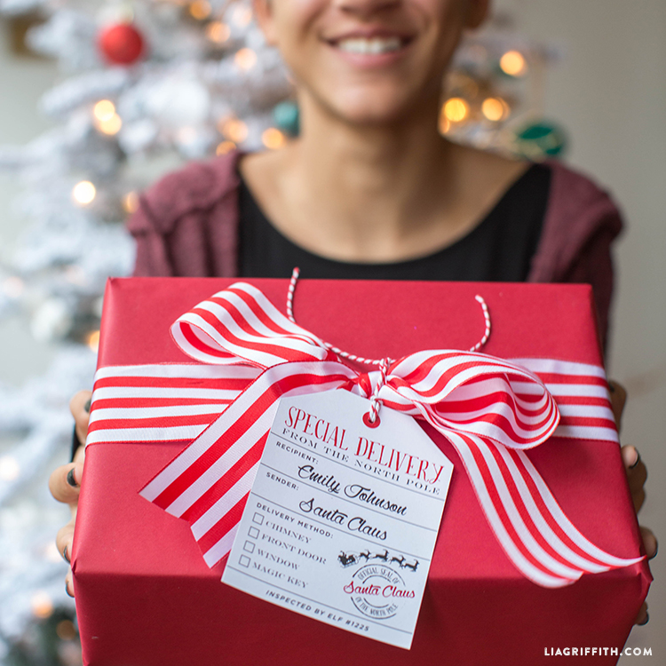 North_Pole_Tags_Special_Delivery_TN