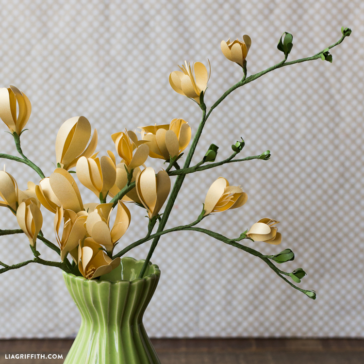 Freesia Blooms