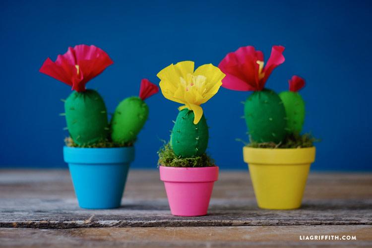 Crepe Paper Cactus Plants