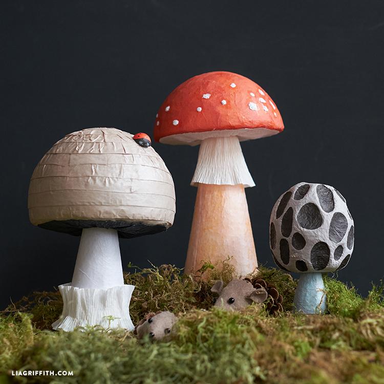 MushroomsTN