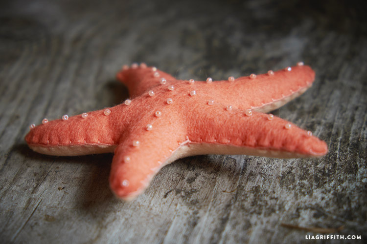 felt_starfish_00005