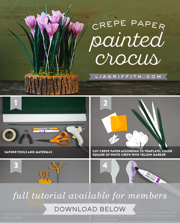 Step by step photo tutorial of crepe paper crocus flowers by Lia Griffith