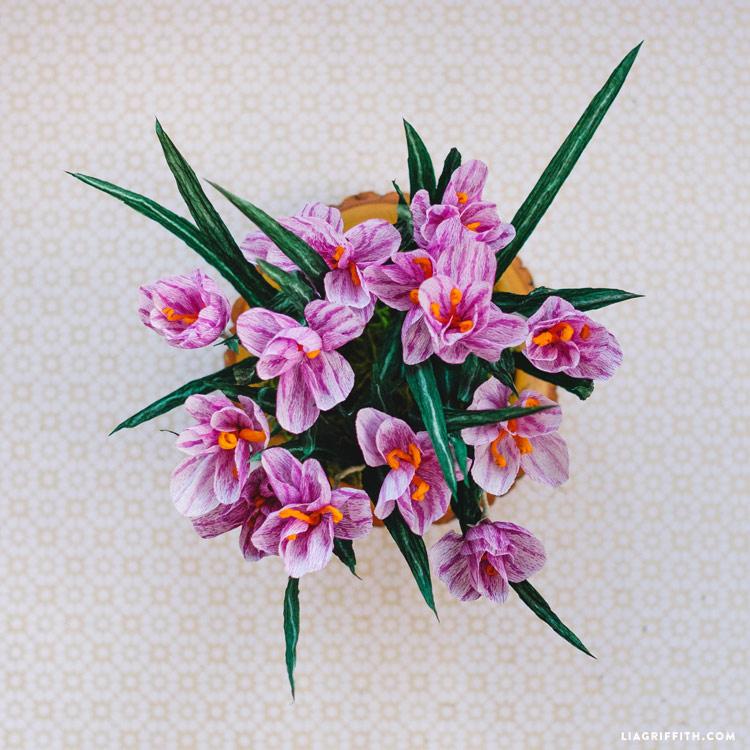 Crepe Paper Crocus Flowers