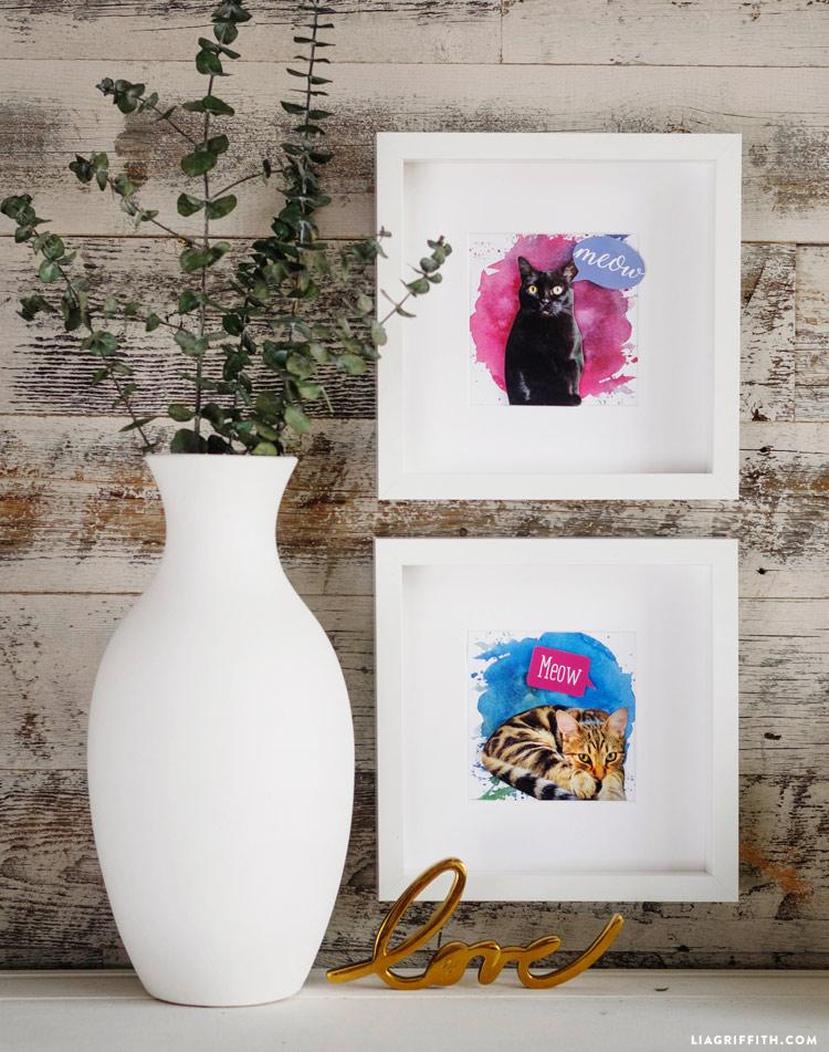 Pet Portrait Project