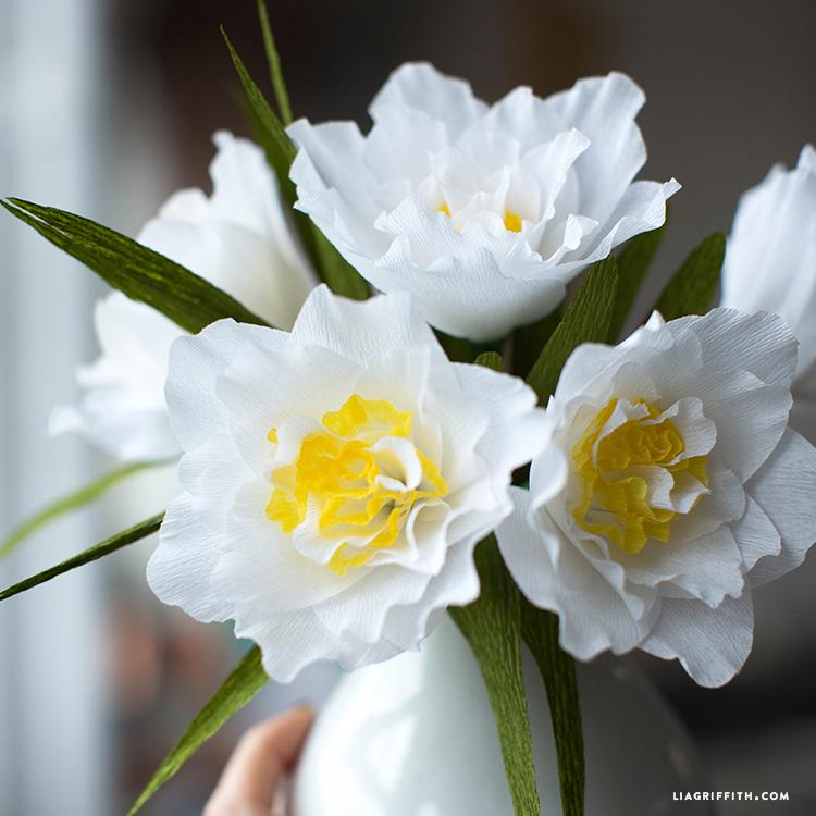 Crepe Double Daffodils