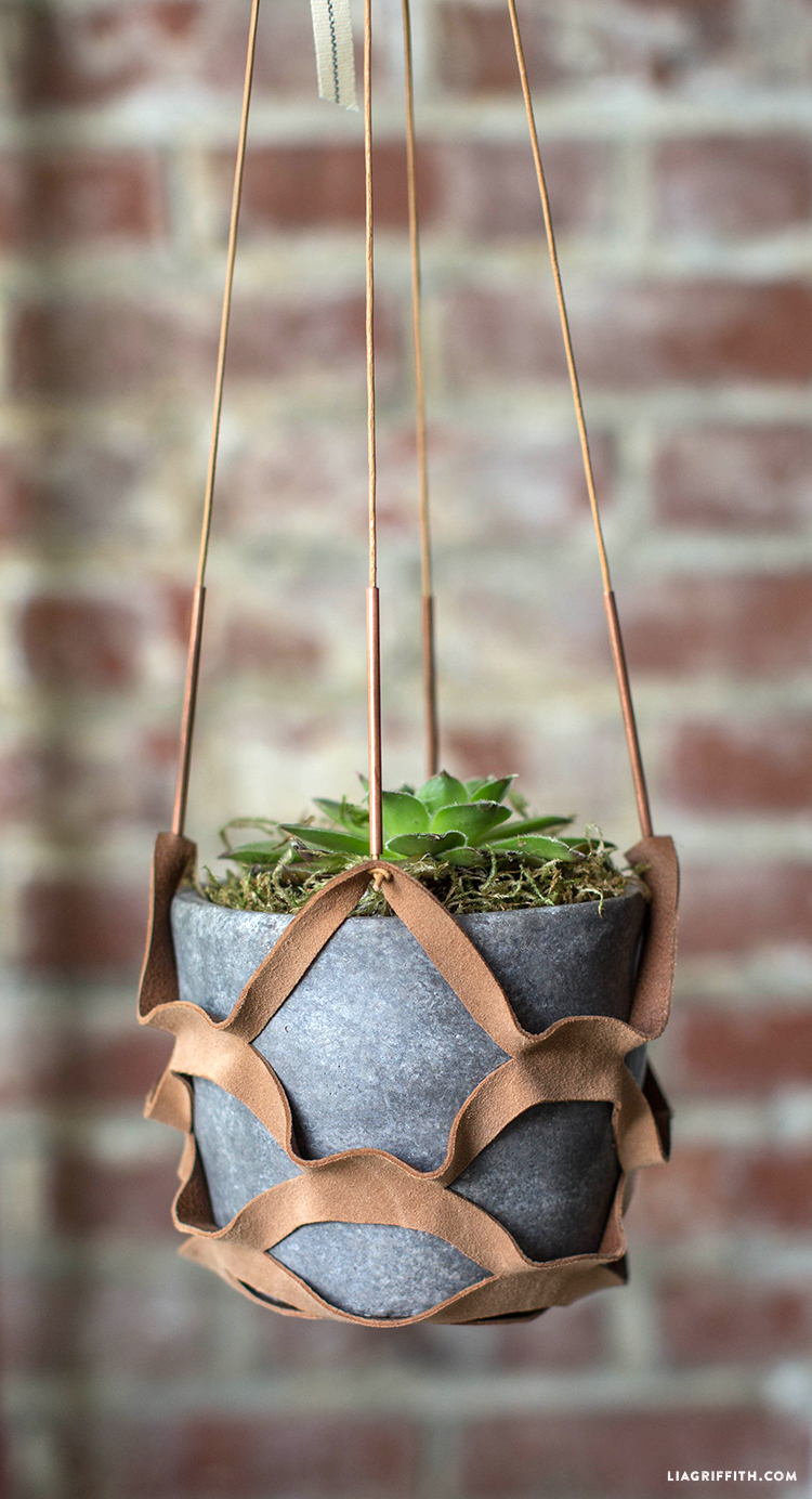 Leather Plant Holder