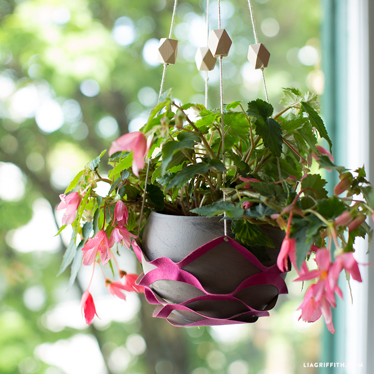 How to Make a DIY Plant Hanger