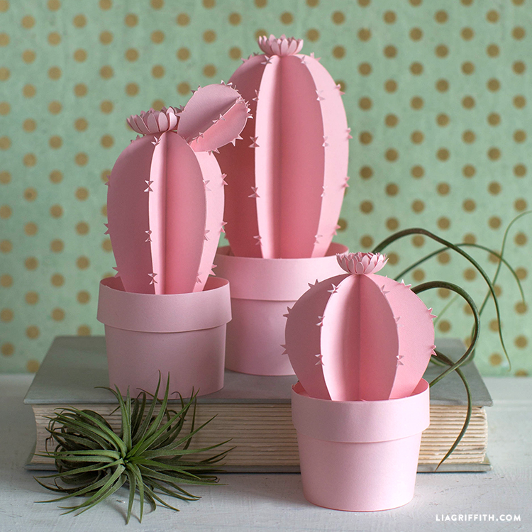 Potted Paper Cactus