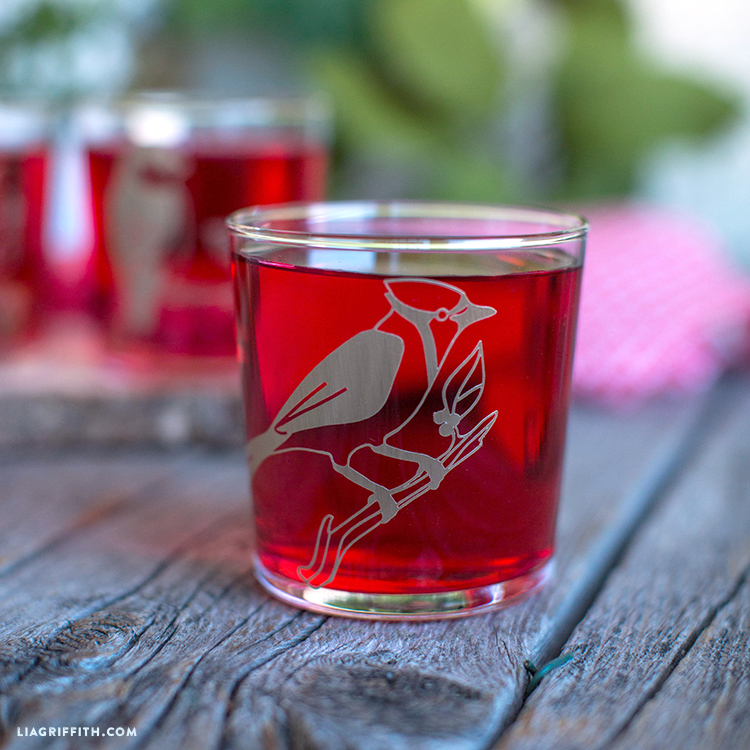 bird decal glasses