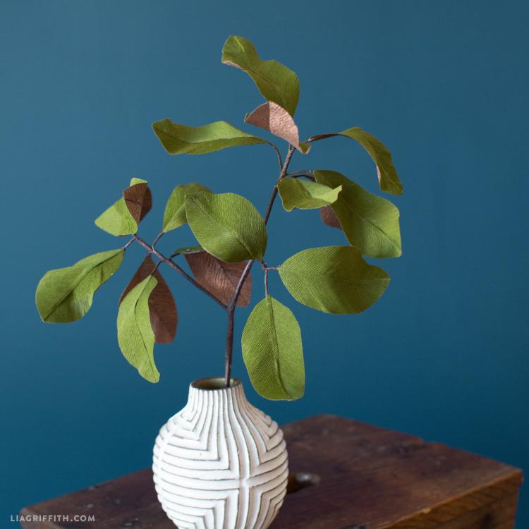 paper magnolia leaves