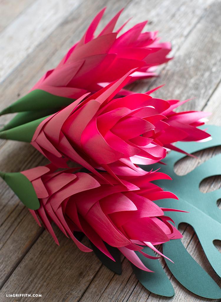 paper ginger flowers