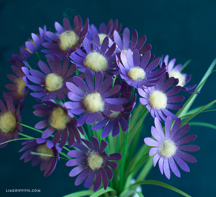 paper asters