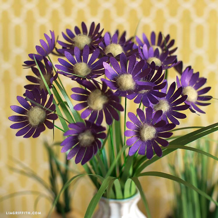 papercut aster flowers