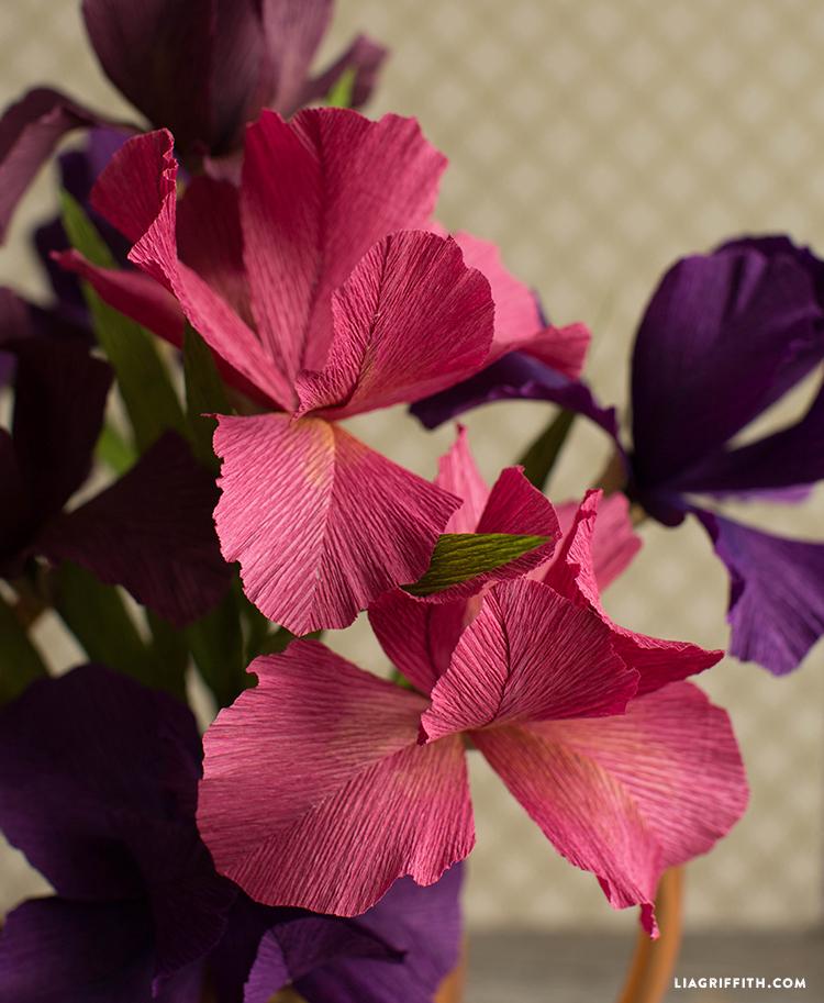 diy crepe iris