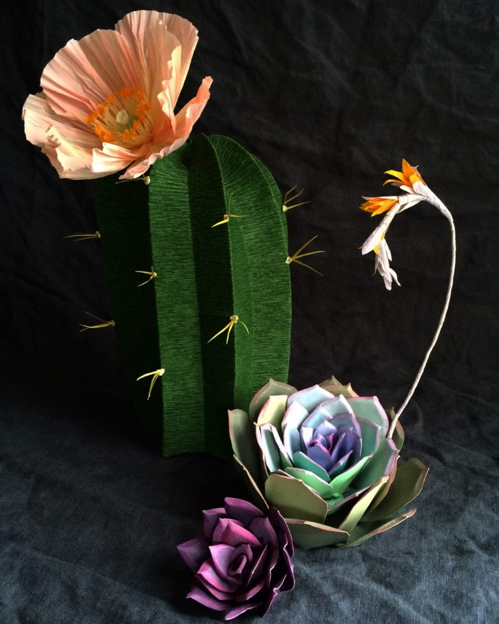 paper flower interview kate alarcon