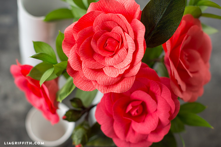 crepe paper camellia flowers