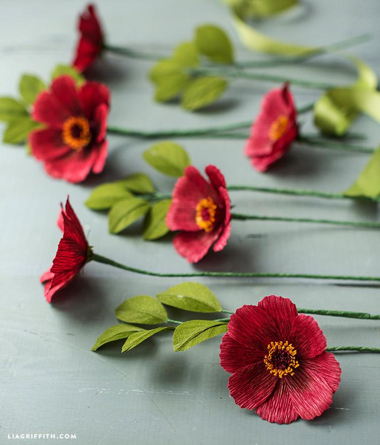 diy paper cosmos flowers