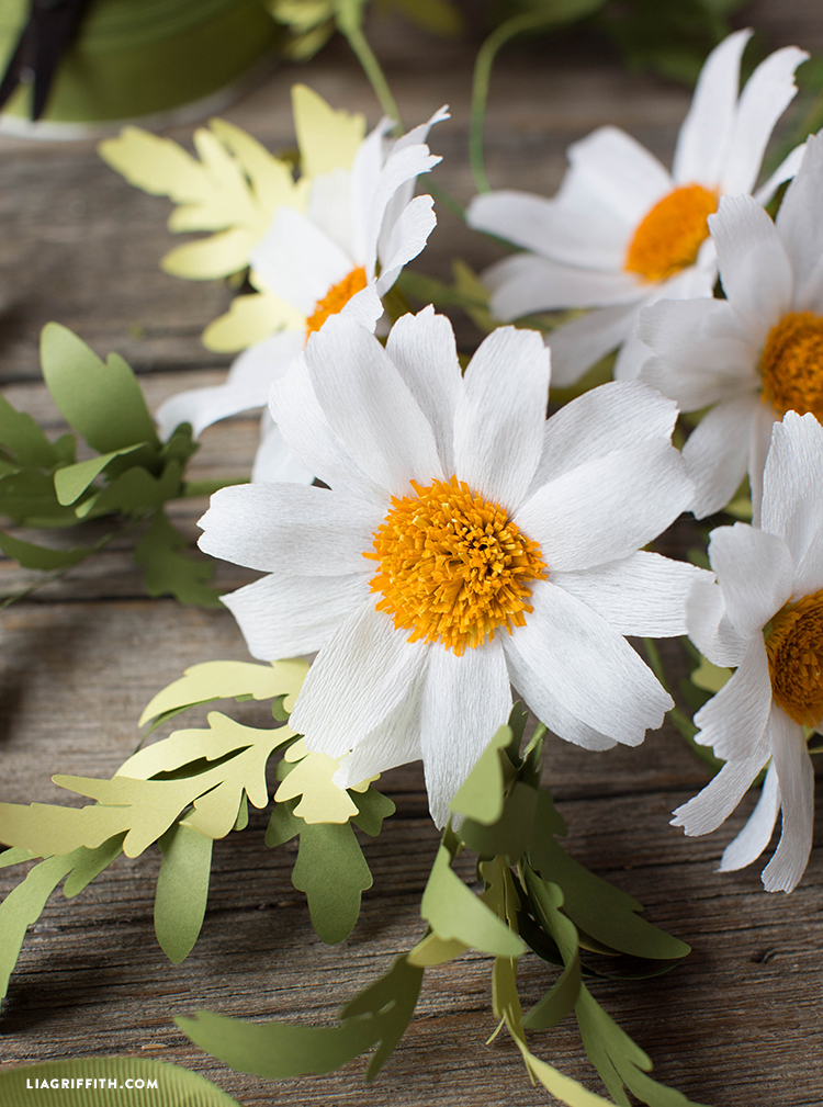 white crepe paper daisies