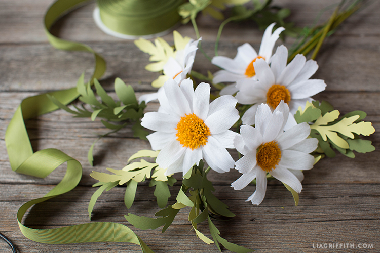White crepe paper daisy flowers next to green ribbon