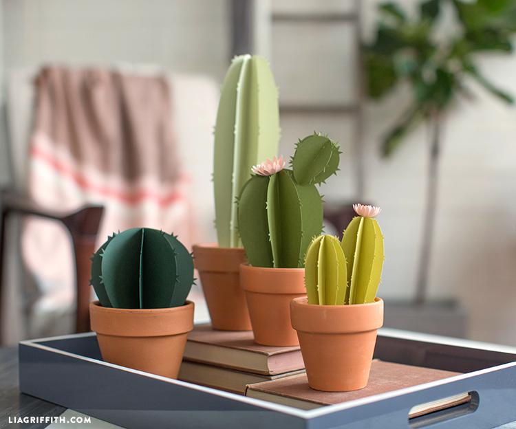 paper cactus