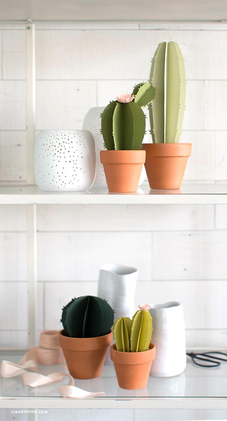 papercut cacti