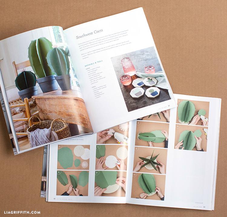 lia griffith book
