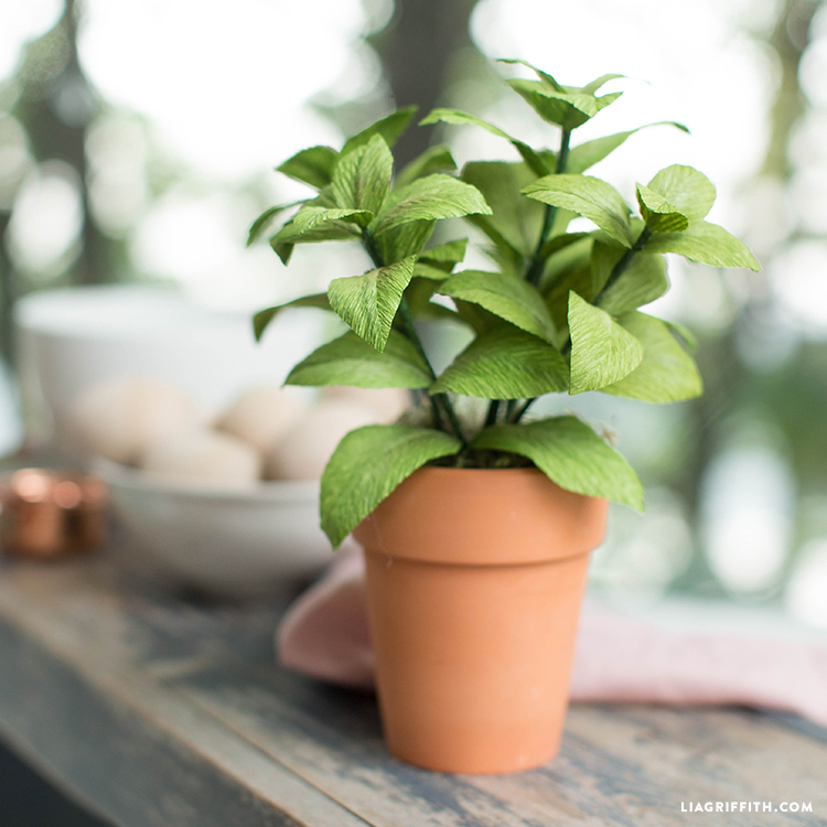 diy crepe paper basil plant