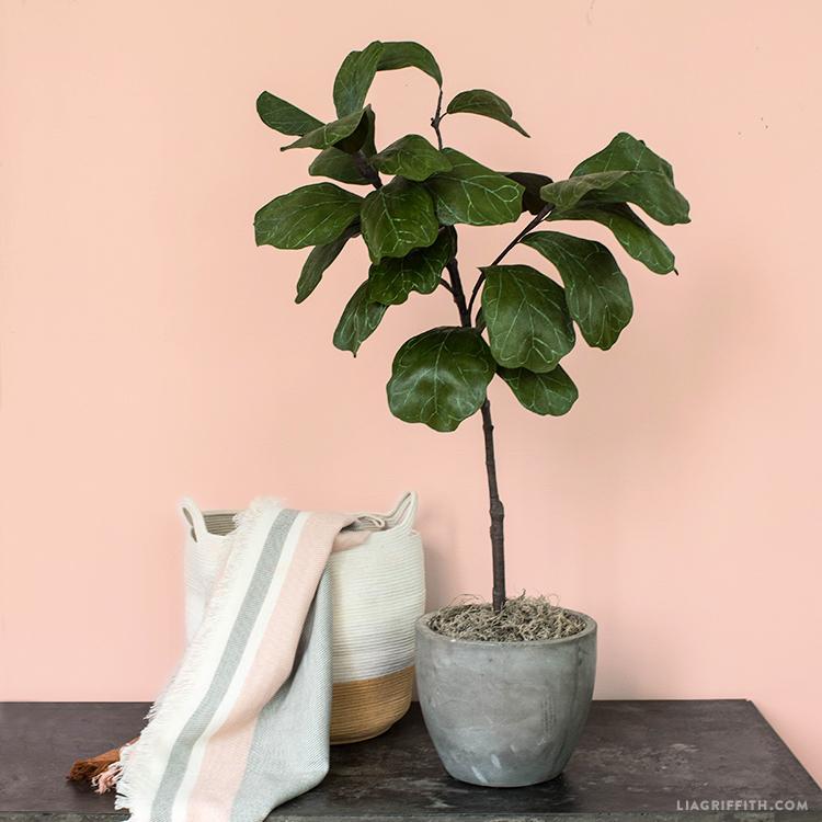 crepe paper fiddle leaf fig tree