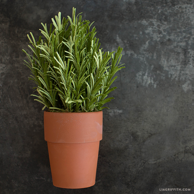 crepe paper rosemary