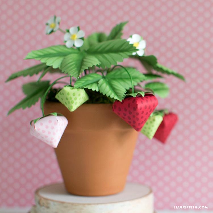 paper strawberry plant