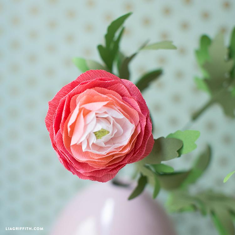 DIY Ranunculus