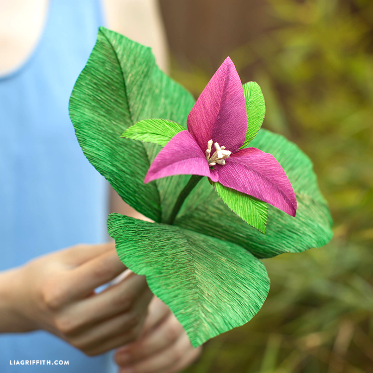 Trillium Flower Heavy Crepe Paper