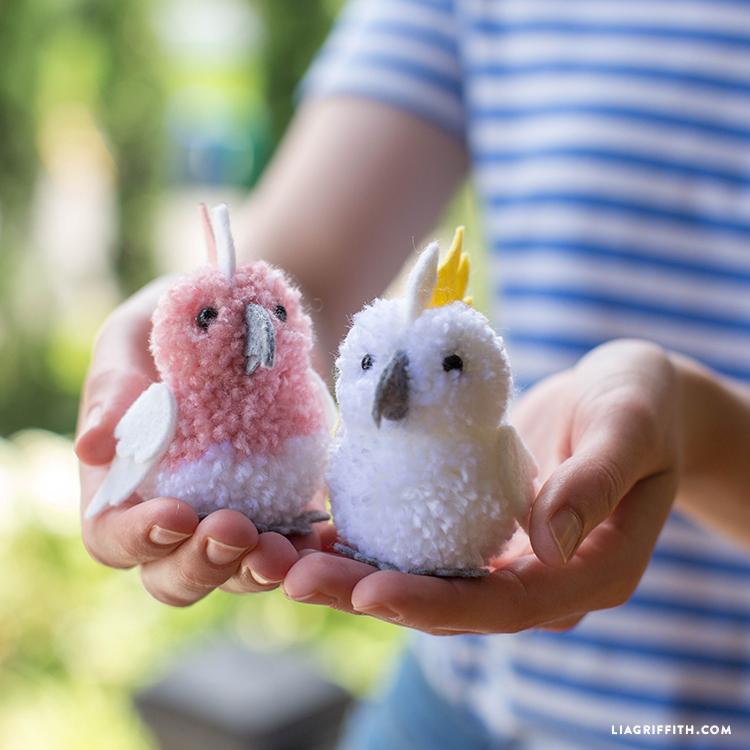 Pom-Pom Cockatoos
