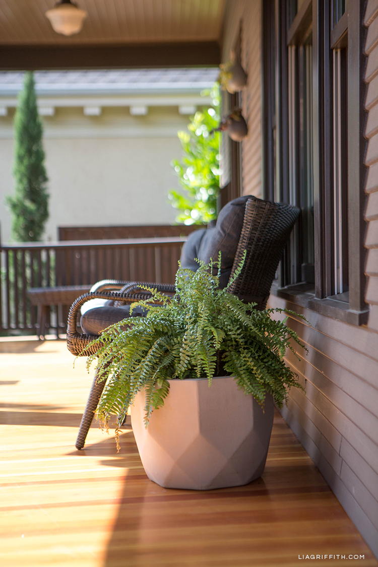 Hayneedle geometric planter for fern on front porch