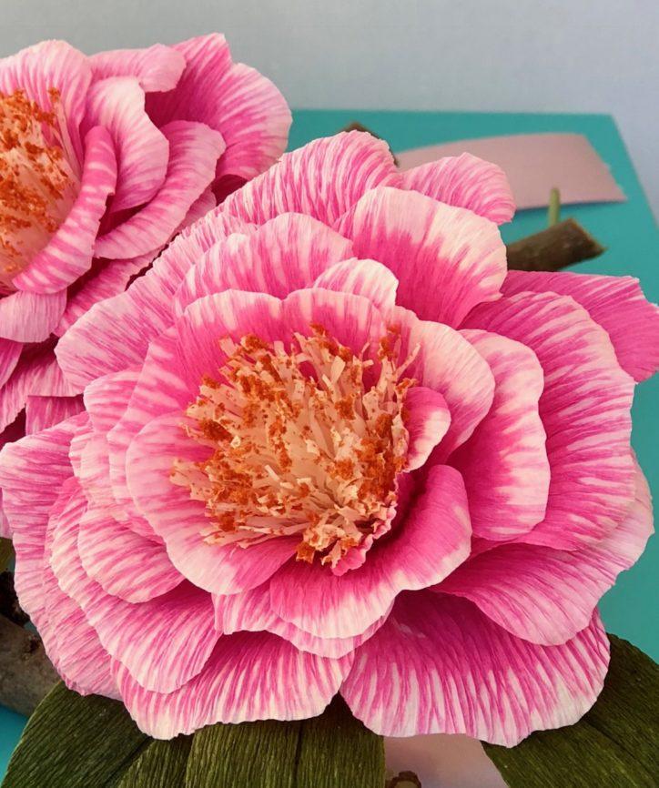 Pink dip-dye paper flowers by Susan Bonn