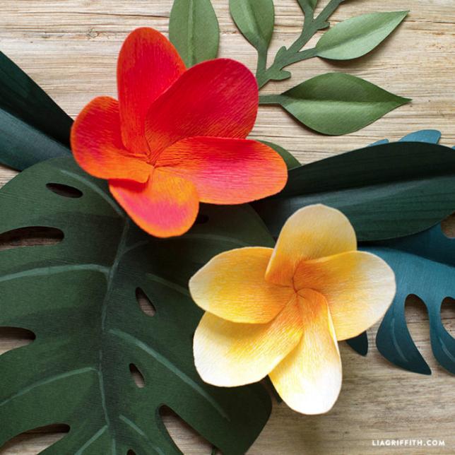 crepe paper plumeria flower
