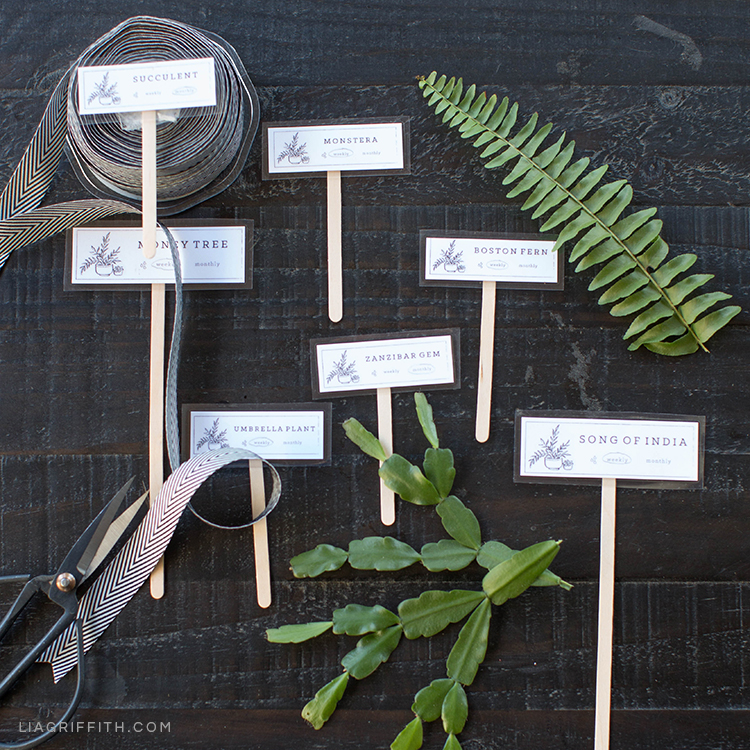 printable house plant markers